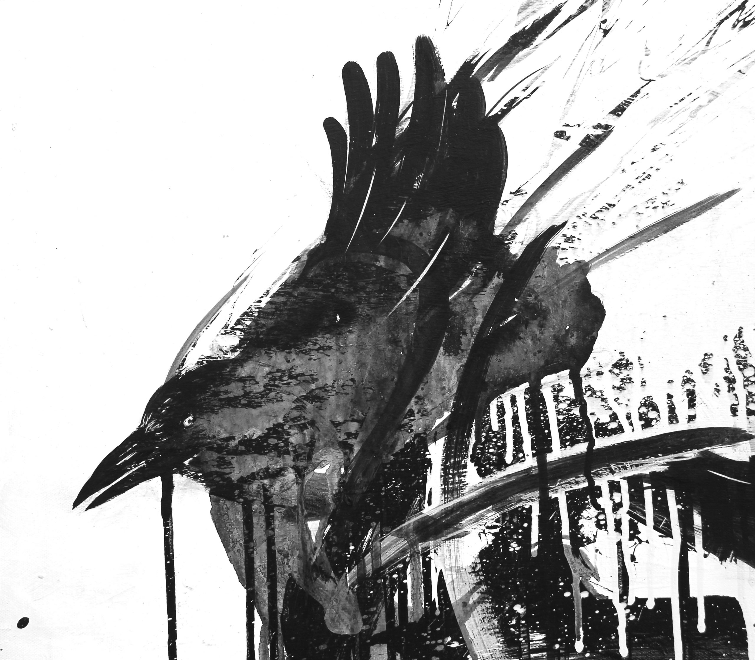Two25 Crows – 2018 #19