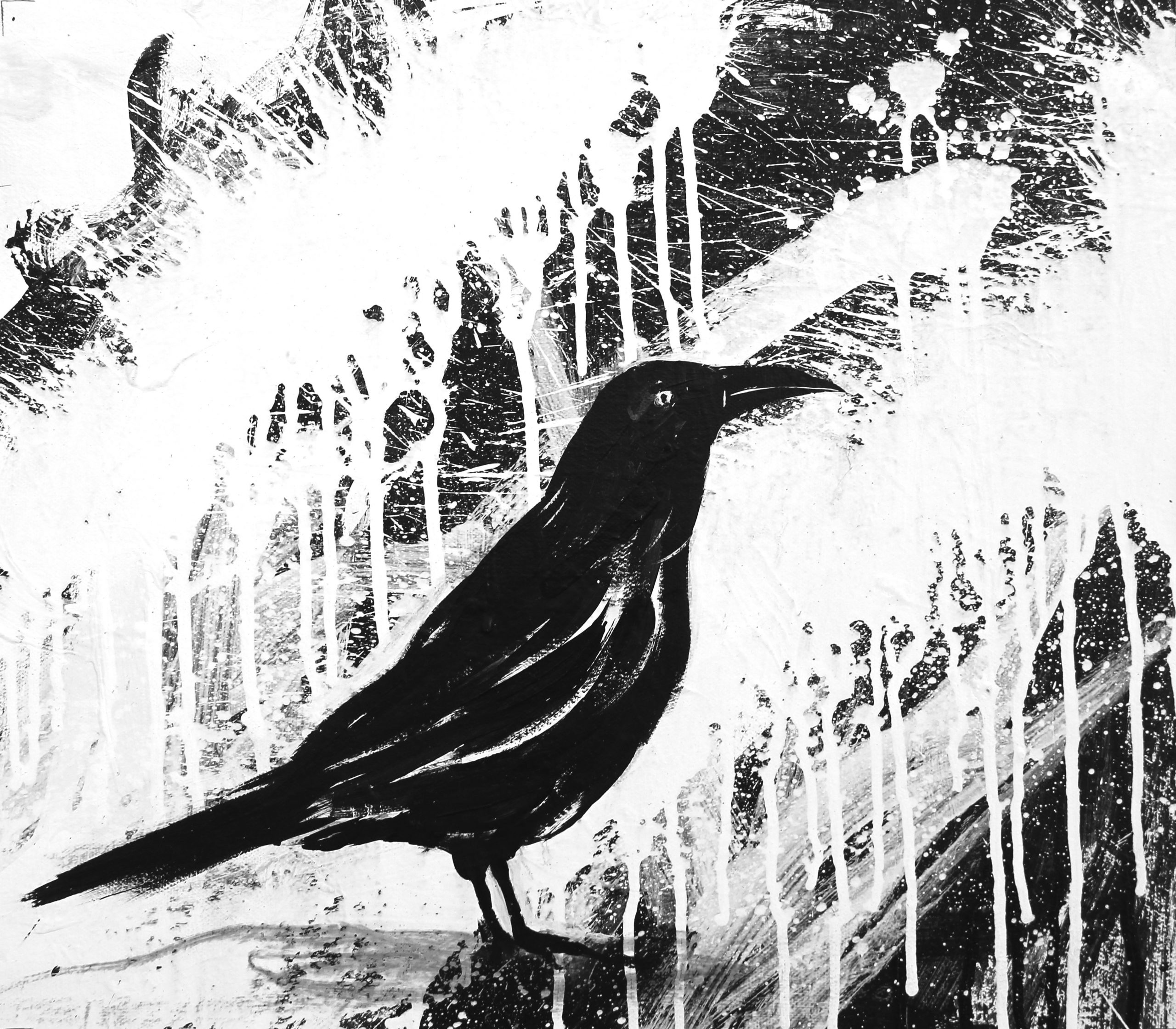 Two25 Crows – 2018